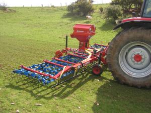 Over seeding grass