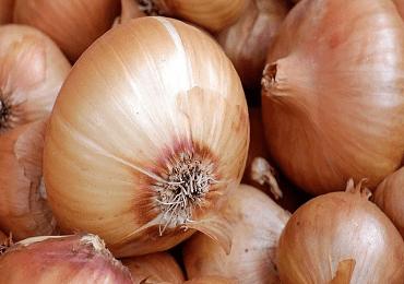 Onion Corrado